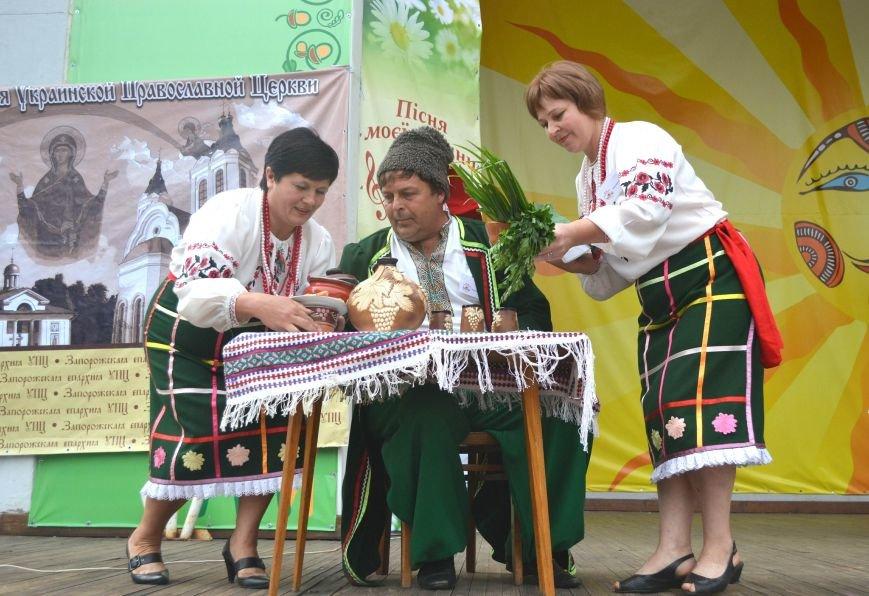 В Запорожье на фестивале семейные коллективы спели свои любимые песни (ФОТО), фото-17