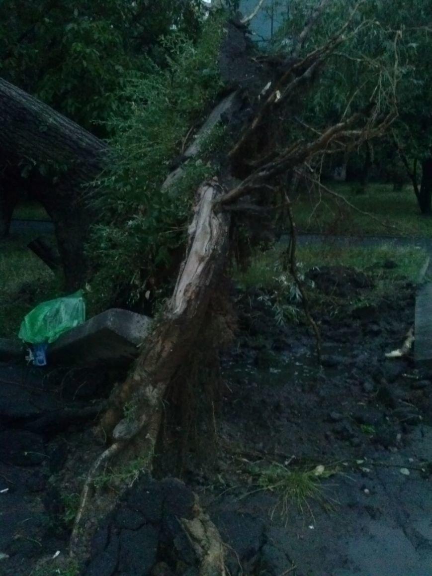 Жители Кривого Рога  продолжают считать повреждения от стихии (ФОТО), фото-4