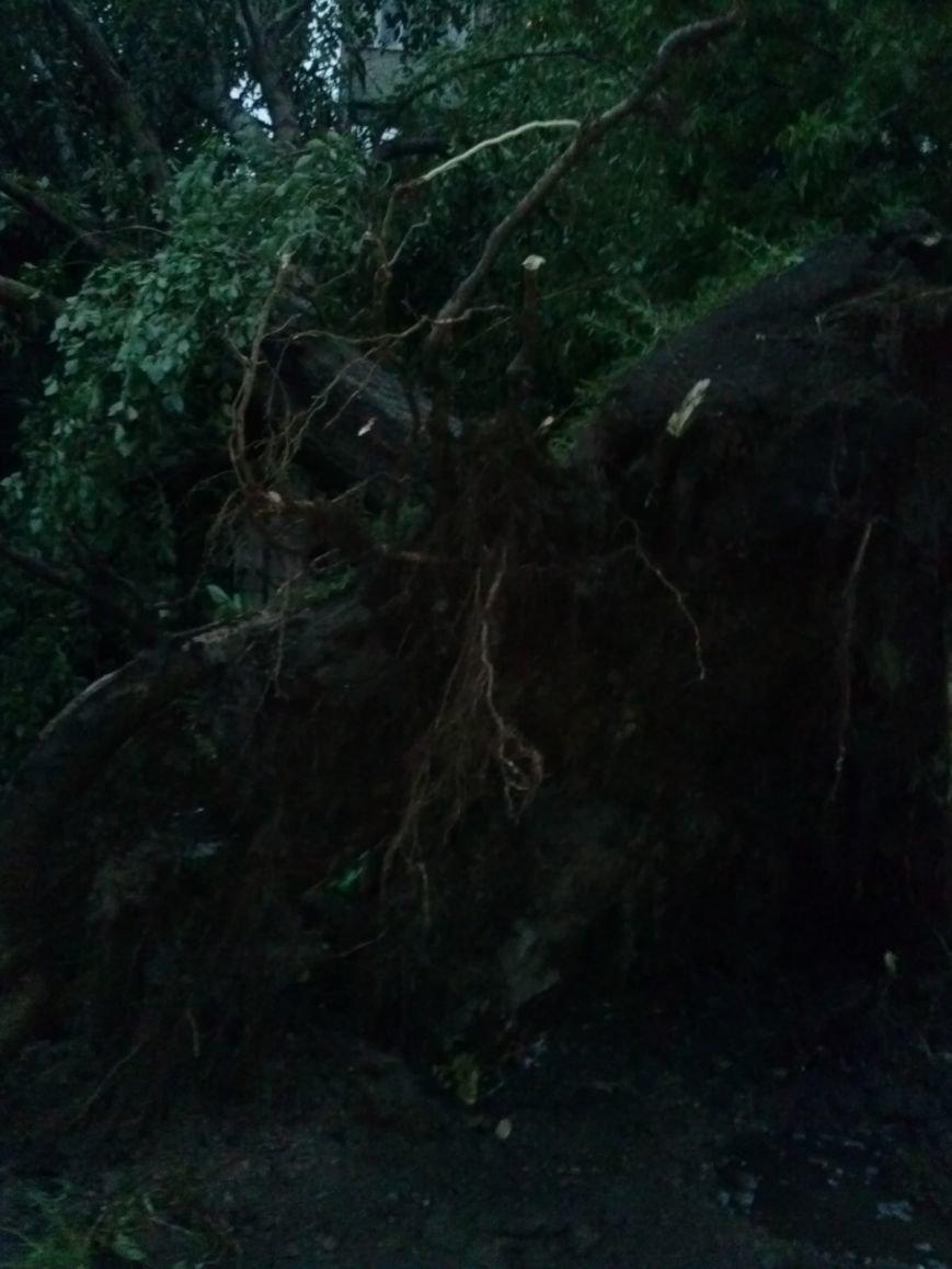 Жители Кривого Рога  продолжают считать повреждения от стихии (ФОТО), фото-2
