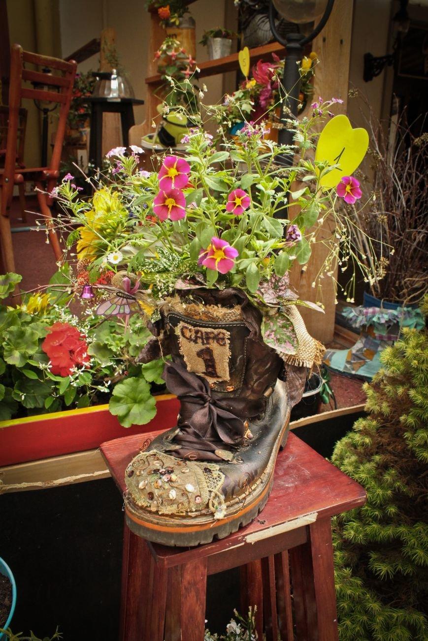 Сьогодні переможець конкурсу «Квіти в чоботях» отримає вікенд до Кракова, фото-1