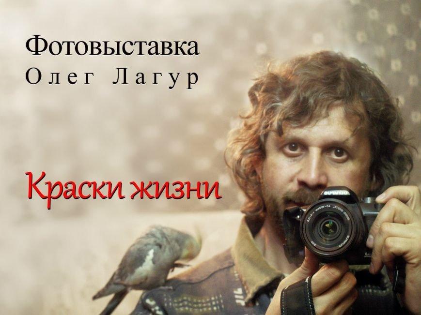 В Запорожском фотоклубе – новая выставка, фото-1