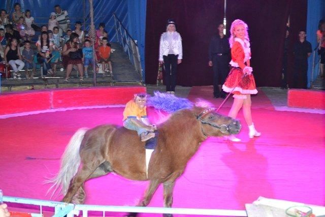 Рівне: 20 дітей зі східних областей відвідали цирк «Олімп» (Фото), фото-1