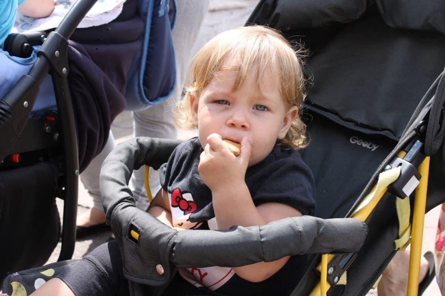 Молодые мамы Кривого Рога вышли бороться за свои права под стены горисполкома (ФОТО), фото-4