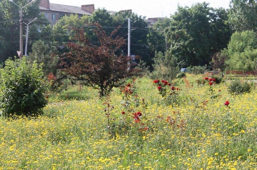 Трава растет очень быстро: артемовские коммунальщики заявляют, что соблюдают график покосов, фото-1