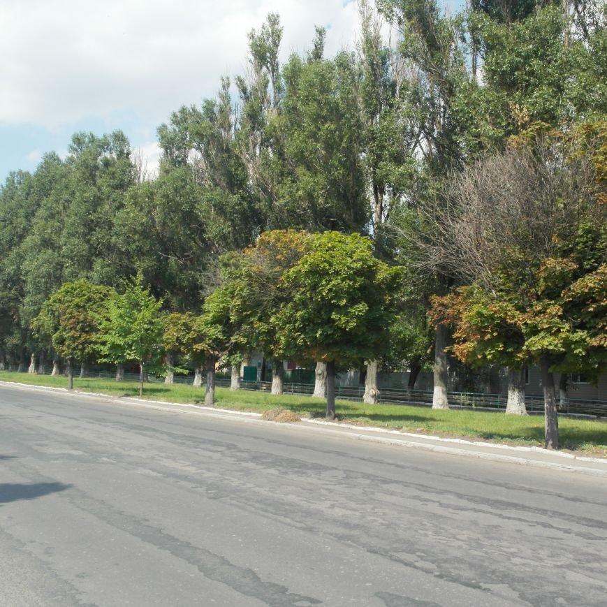 Тайна БУКов: как выглядит настоящая улица Горького, 49 в Красноармейске, фото-7
