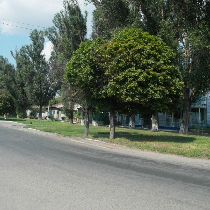 Тайна БУКов: как выглядит настоящая улица Горького, 49 в Красноармейске, фото-2