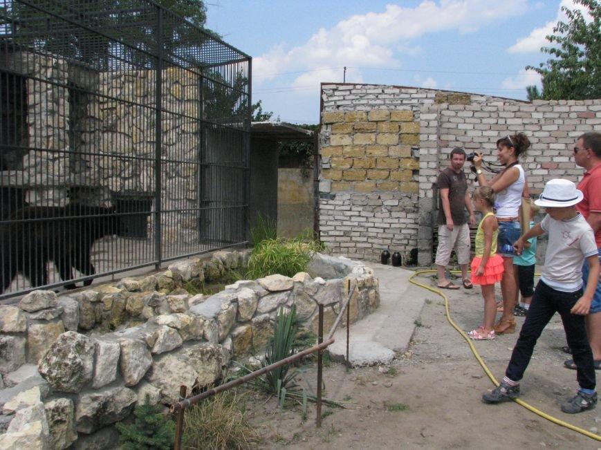 Жизнь питомцев в Васильевском зоопарке: 60 килограмм мяса в день и расширение жилплощади (ФОТОРЕПОРТАЖ), фото-12