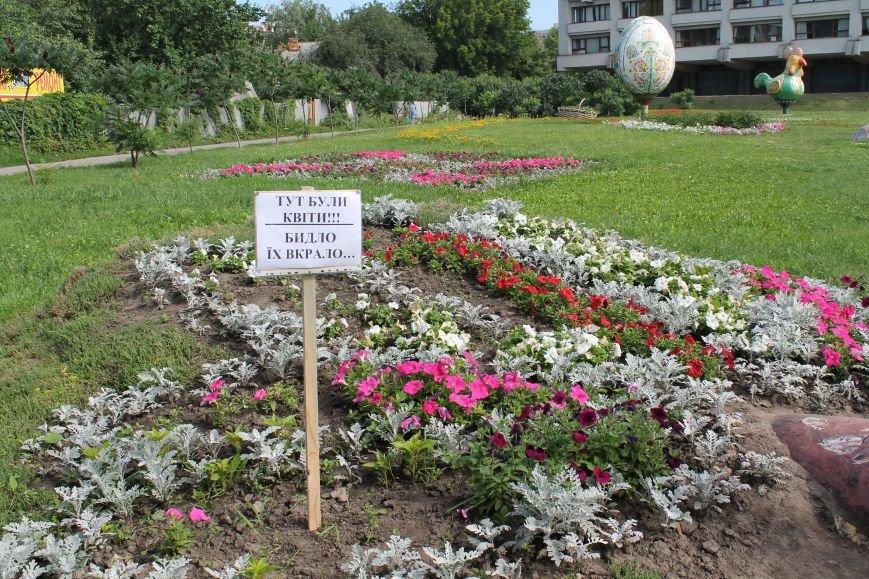 В Сумах «быдло» опять раскурочило цветочные клумбы, фото-2