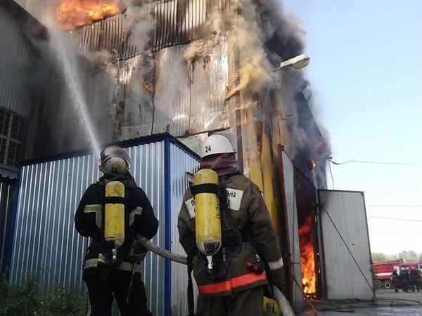 В Киеве произошел крупный пожар на Выдубичах (Дополнено, ФОТО), фото-2