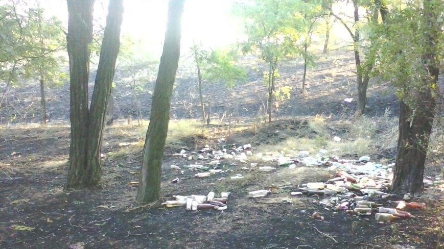 Под Мариуполем горела заповедная территория (ФОТО), фото-2