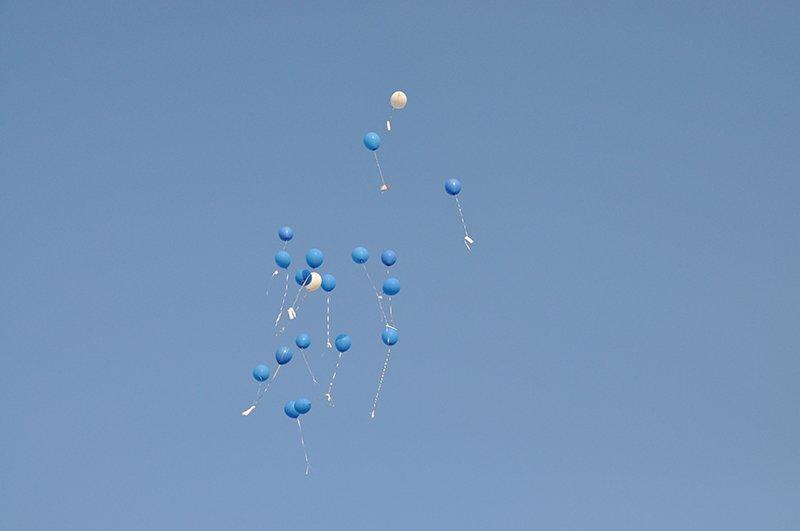 В Белгороде отметили 100-летие «муми-мамы» Туве Янссон, фото-2