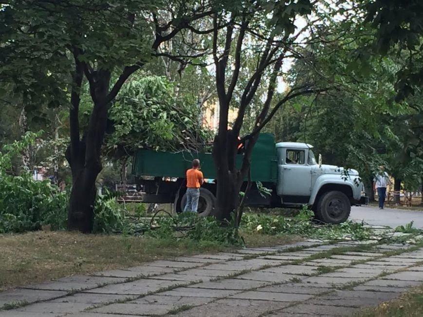 В Мариуполе деревья обрезали ради удобства охраны Гипромеза (Фотофакт), фото-1