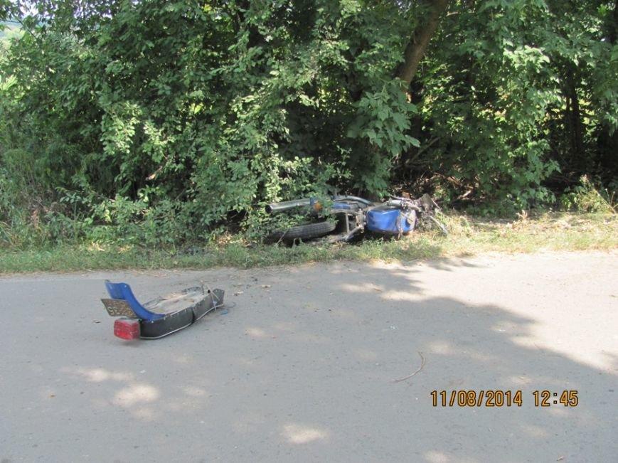 На Сумщине насмерть разбились мотоциклист и его пассажир (ФОТО), фото-1