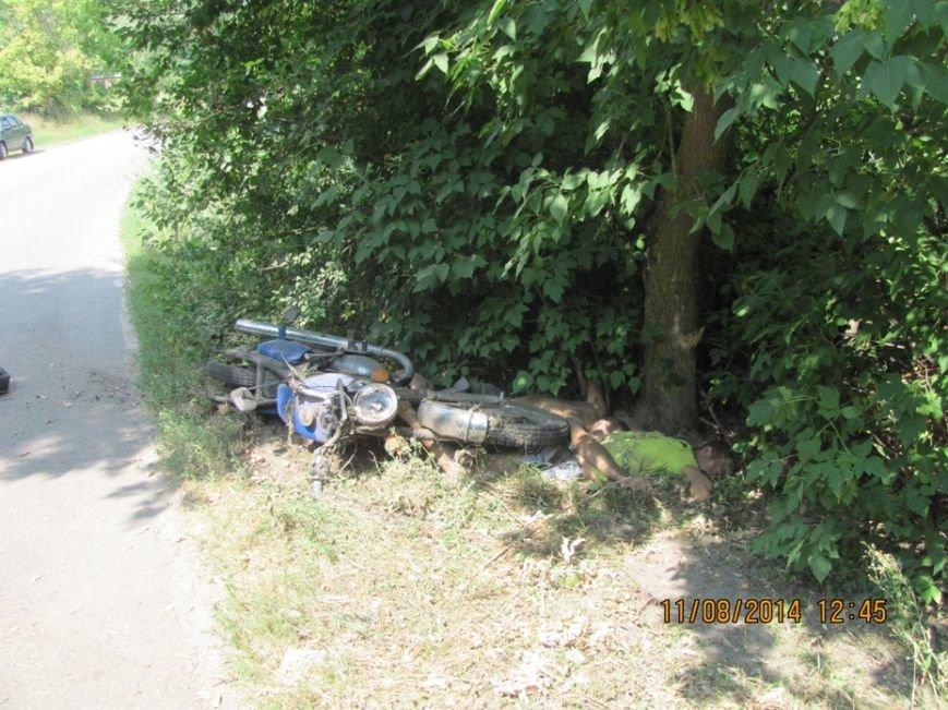 На Сумщине насмерть разбились мотоциклист и его пассажир (ФОТО), фото-2
