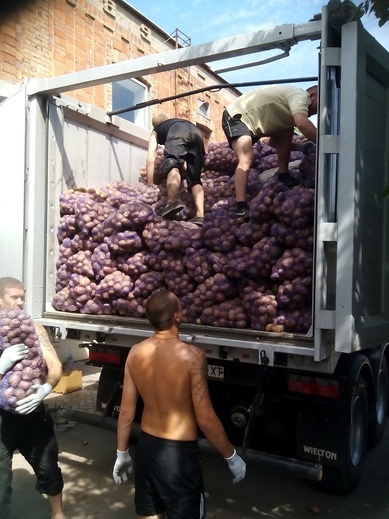 В Мариуполе беженцы получили 50 тонн картофеля от жителей Черкасской и Сумской областей (ФОТО), фото-4