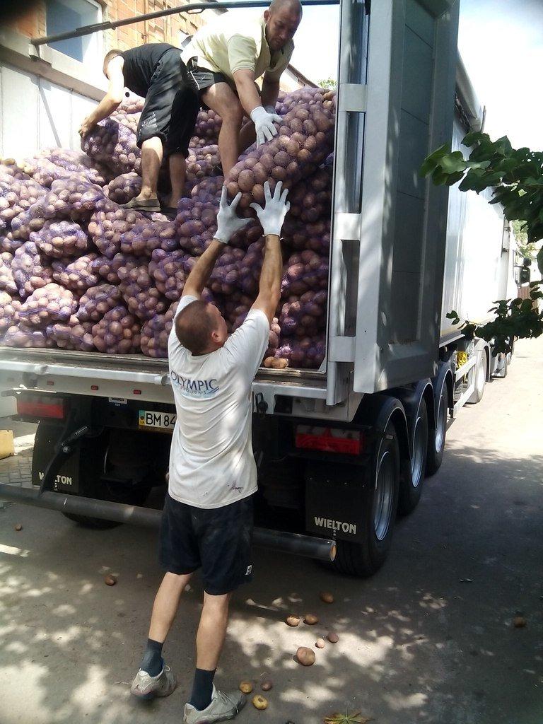 В Мариуполе беженцы получили 50 тонн картофеля от жителей Черкасской и Сумской областей (ФОТО), фото-5