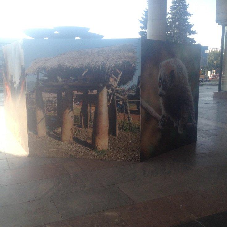 Выставка Лаоса в Ульяновске, фото-1