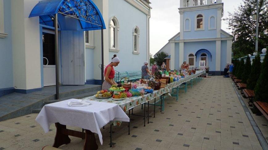 Белореченская молодежь приняла участие в краевой молодежной акции «Яблочный спас», фото-1