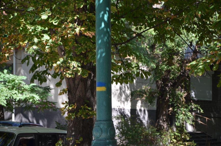 В Мариуполе тысячи флагов раздали за 5 минут? (ФОТО), фото-9