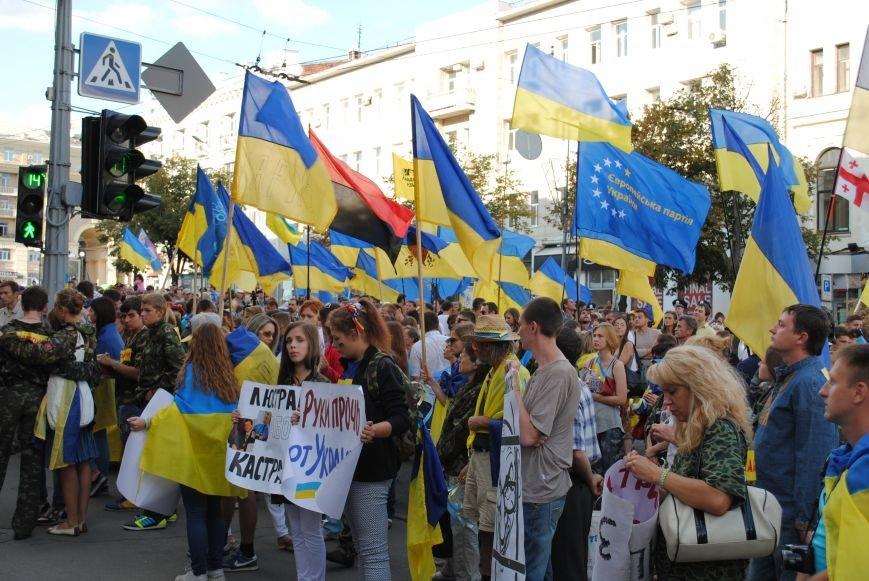 В Харькове евромайдановцы организовали батальон «Антигепин», подрались с милицией и развесили флаги над Сумской, фото-23
