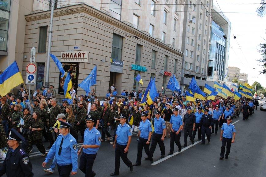 В Харькове евромайдановцы организовали батальон «Антигепин», подрались с милицией и развесили флаги над Сумской, фото-8