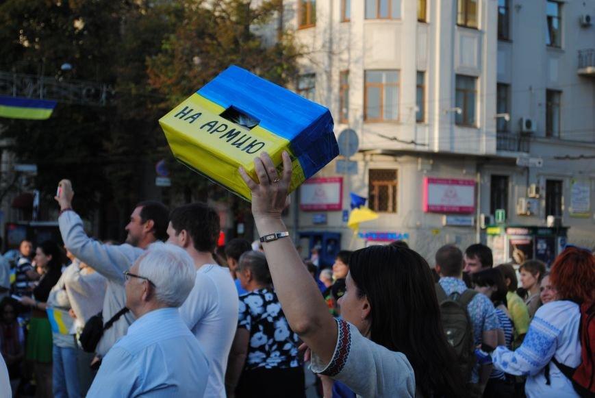 В Харькове вместо парада вышиванок состоялась очередная акция евромайдановцев, фото-1