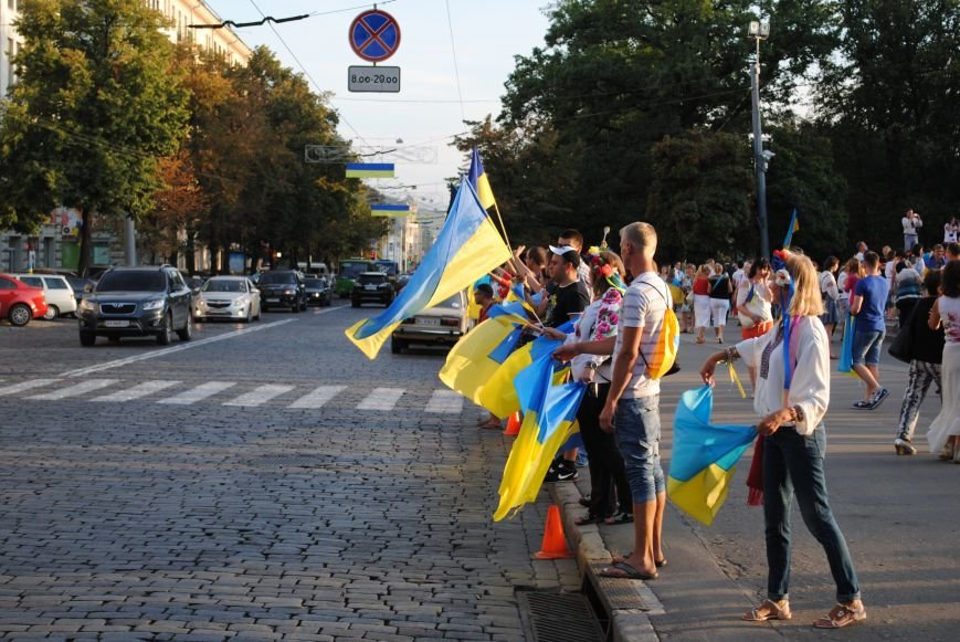 В Харькове вместо парада вышиванок состоялась очередная акция евромайдановцев, фото-17