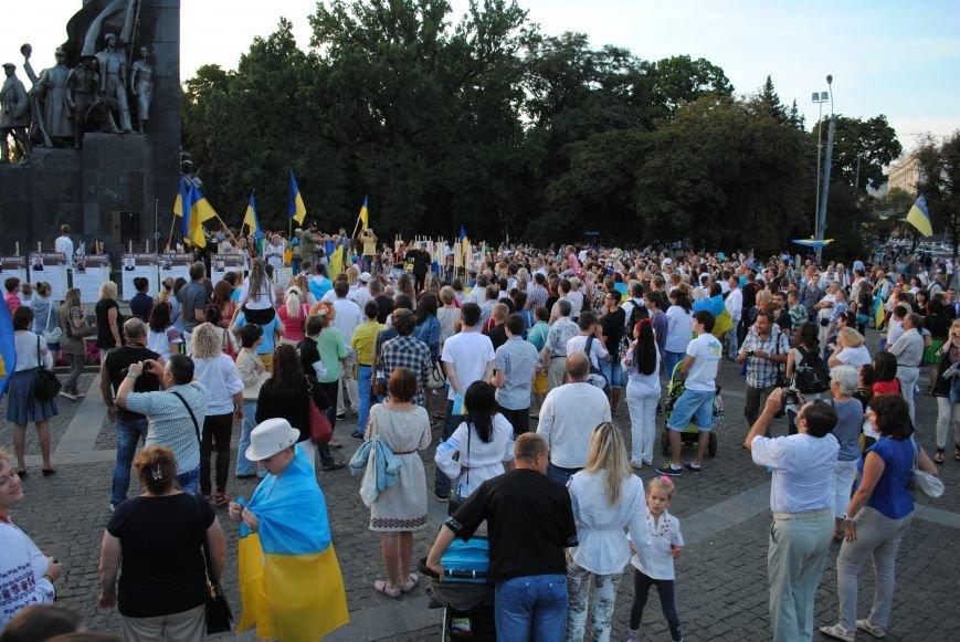 В Харькове вместо парада вышиванок состоялась очередная акция евромайдановцев, фото-11