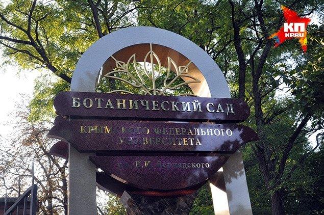 ФОТОФАКТ: В Симферополе у входа в ботанический сад установили стелу, фото-1