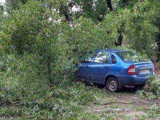 Последствия шторма: что происходит на улицах города, фото-5