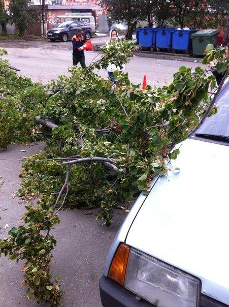 Последствия шторма: что происходит на улицах города, фото-4