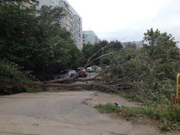 Последствия шторма: что происходит на улицах города, фото-3