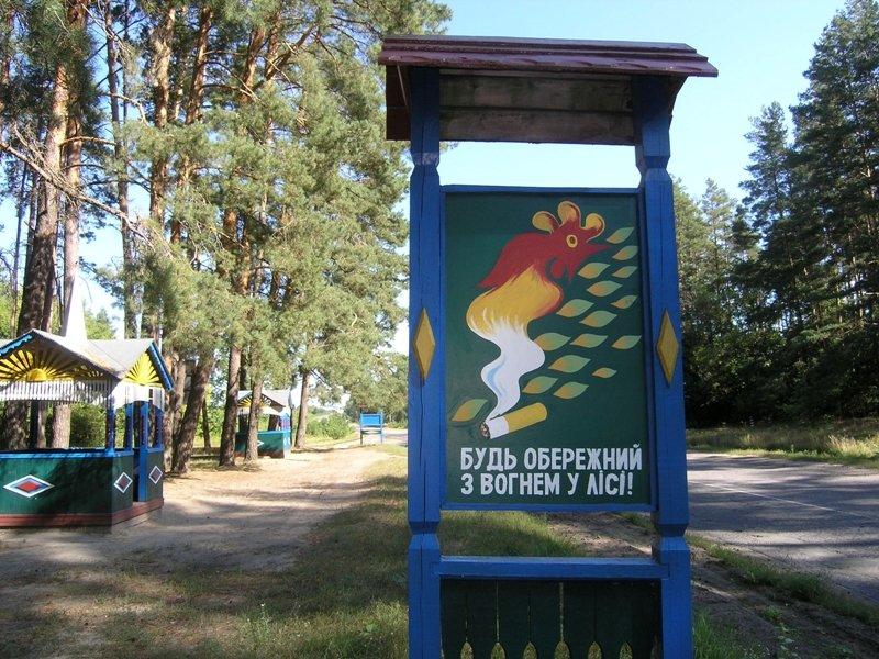 Сумська область: рятувальники перевірили забезпечення пожежної безпеки лісів (ФОТО), фото-4