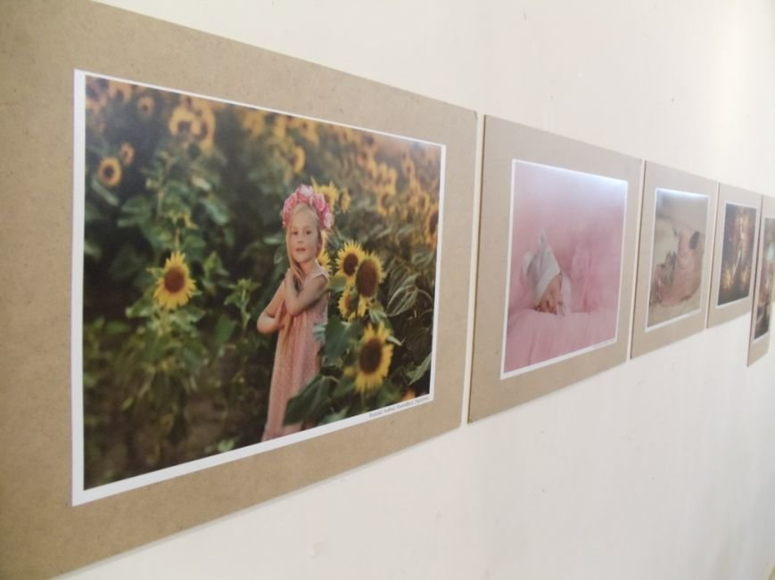 В Ильичёвске открылась выставка фотографий со всего мира (Фотоотчёт), фото-3