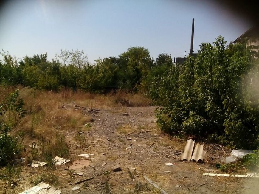 Мариупольцы начнут строительство приюта для животных (ФОТО), фото-7