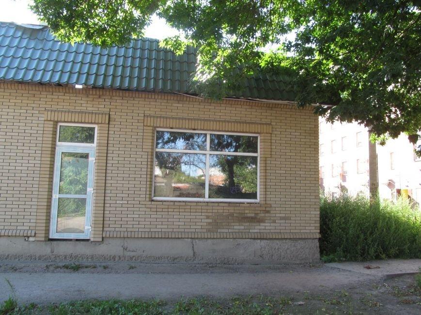 Запасайтесь Лоратадином - амброзия процветает в центре Кременчуга (ФОТО), фото-4
