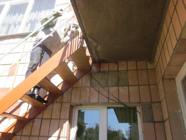 Рівне: рятувальники знешкодили два кубла шершнів на території дитячого садочку, фото-1