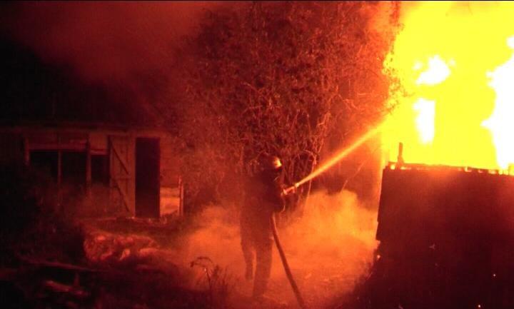 За сутки в Сумской области пожарные спасли 2 человек (ФОТО), фото-6