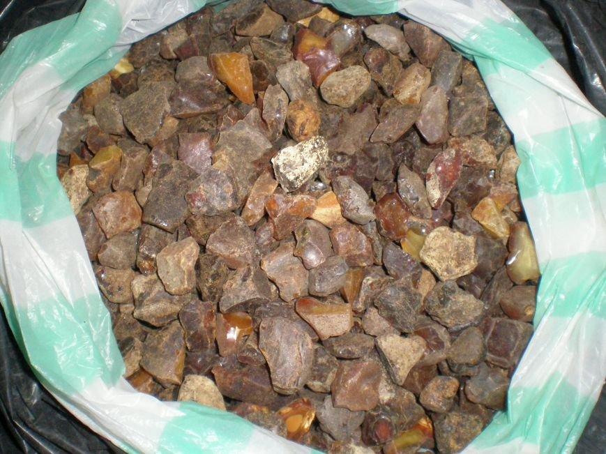Правоохоронці виявили та вилучили близько 50 кілограм бурштину (Фото), фото-5