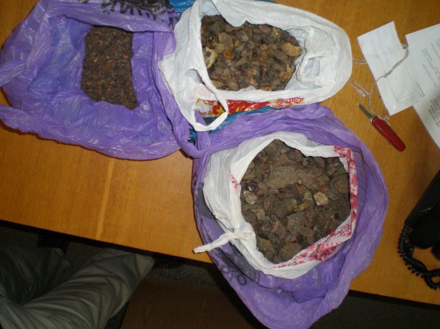 Правоохоронці виявили та вилучили близько 50 кілограм бурштину (Фото), фото-6