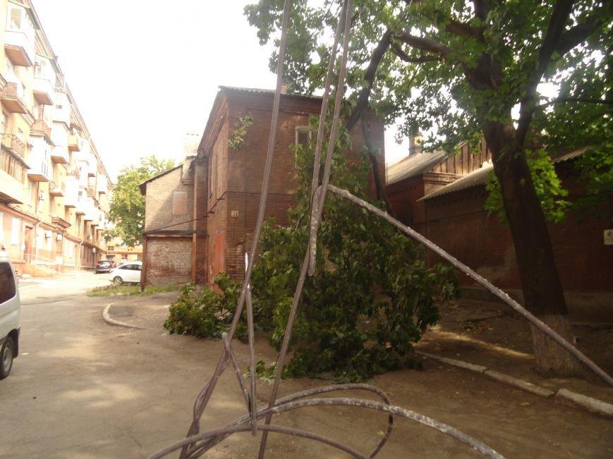 В Мариуполе клен обесточил дом (ФОТО), фото-1