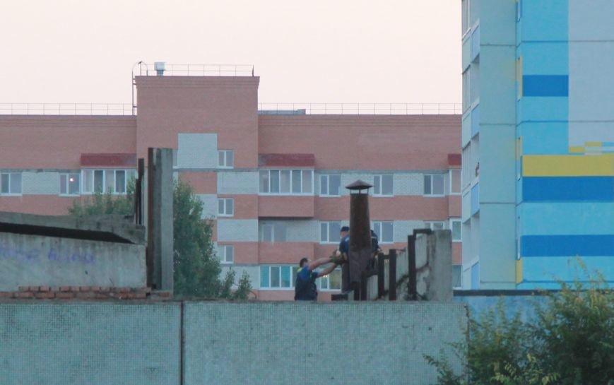 Собаки на крыше гимназии № 79, фото-1