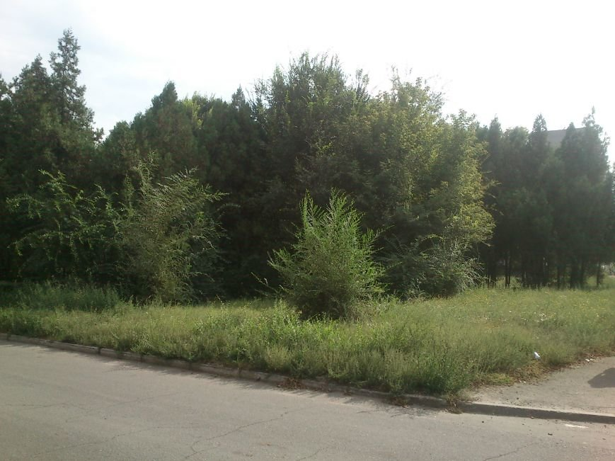 В результате ДТП, на перекрестке Аношкина и Республиканской перевернулось авто, фото-4