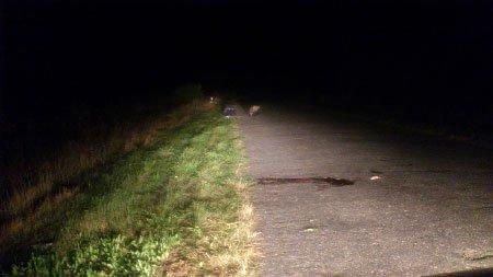 На Сумщине насмерть разбился мотоциклист (ФОТО), фото-1