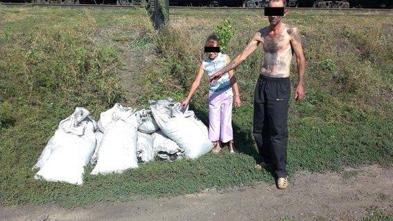 В Днепропетровской области злоумышленники украли полтонны угля, фото-2
