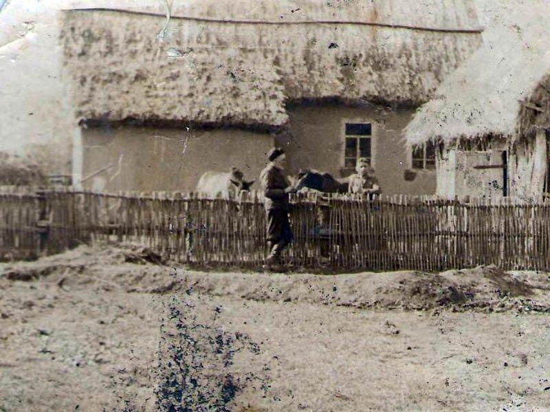 5.Подворье семьи Васиных. Фото, с. Гофицкое, кон.1940-х гг. Из архива Гофицкой администрации