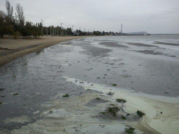 В Мариуполе море отошло от берегов (ФОТОФАКТ), фото-3