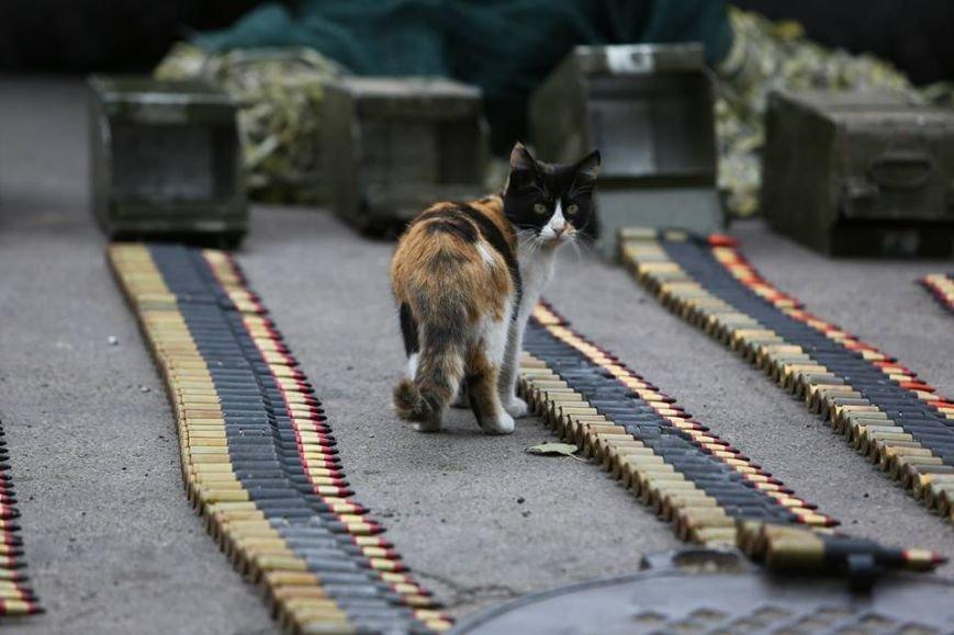 Под Мариуполем несут службу украинские военные (ФОТОРЕПОРТАЖ), фото-14