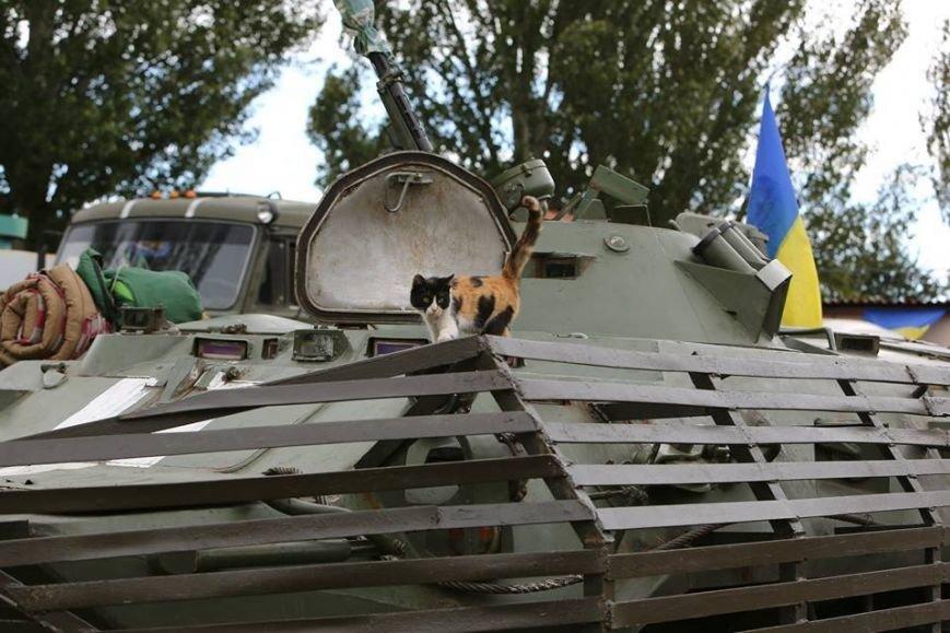 Под Мариуполем несут службу украинские военные (ФОТОРЕПОРТАЖ), фото-4