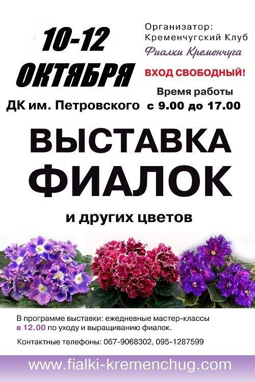 В Кременчуге пройдет выставка фиалок, фото-1
